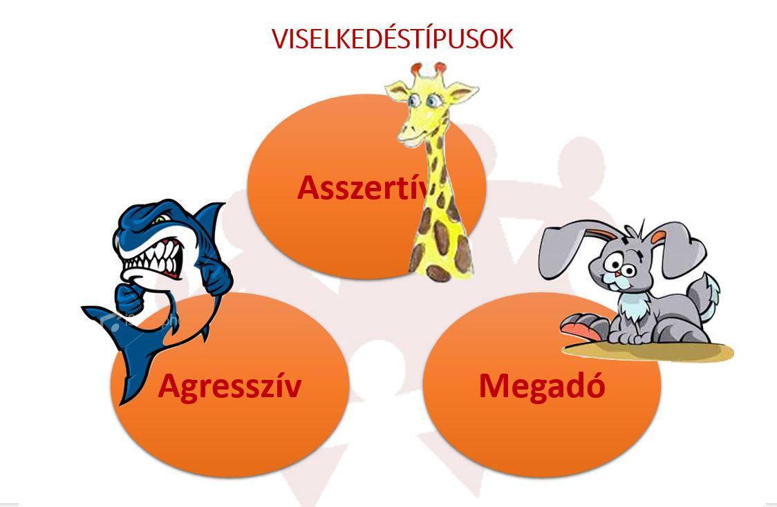 Asszertív kommunikáció - viselkedéstípusok - vezetőképzés
