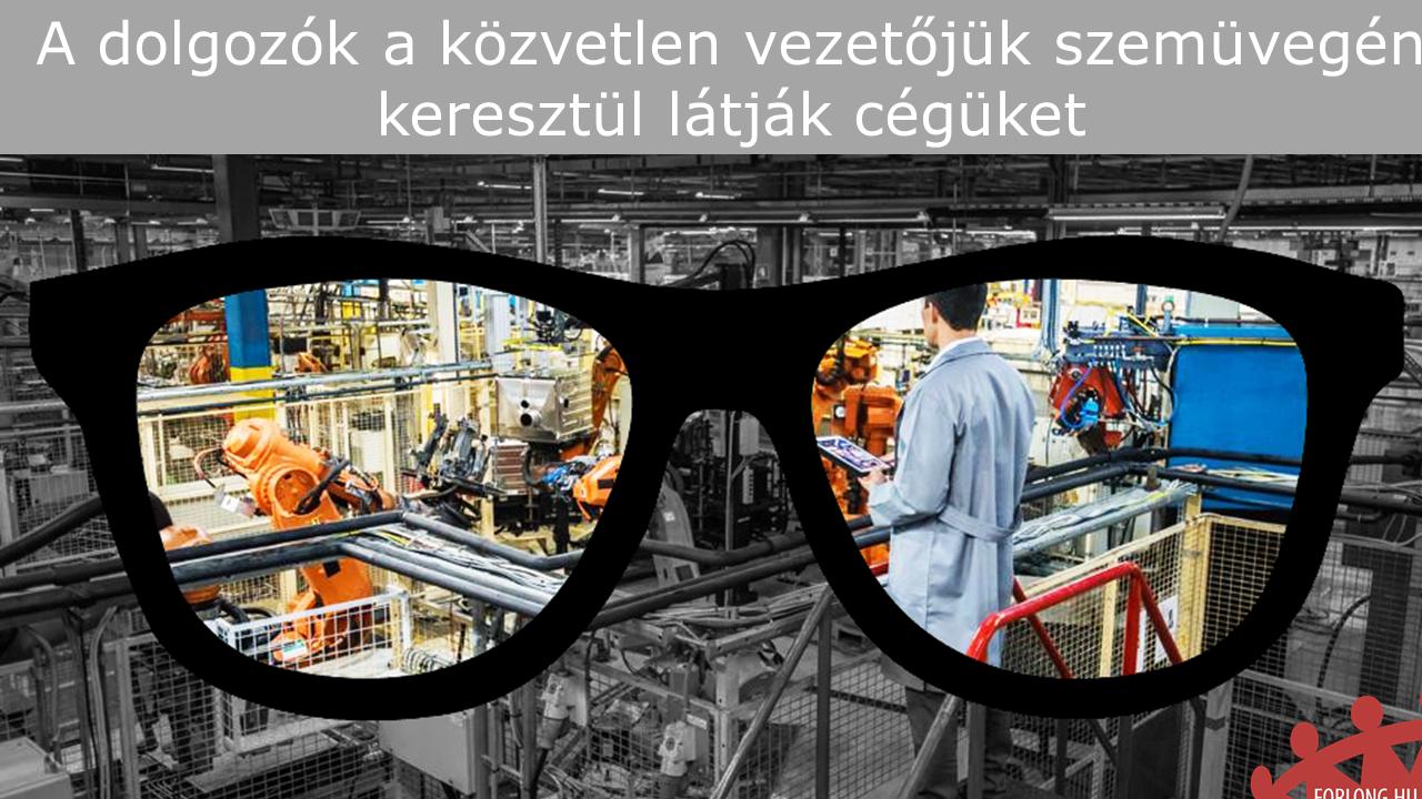 A dolgozók a közvetlen vezetőjük szemüvegén keresztül látják cégüket - gyakorlatorientált vezetőképzés